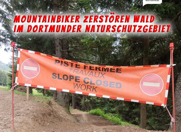 Mountainbiker zerstören Wald im Dortmunder Naturschutzgebiet – Und täglich grüßt das Murmeltier